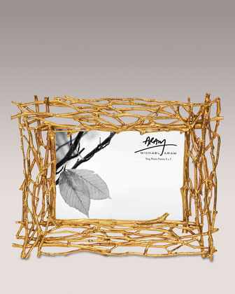 Michael Aram Gold-Tone Twig Frame, 5 x 7 traditional-frames