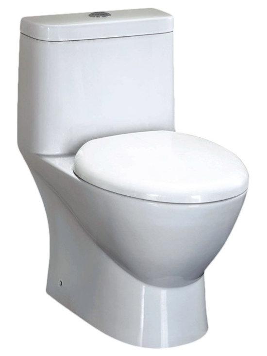 EAGO TB346 One piece dual flush toilet -
