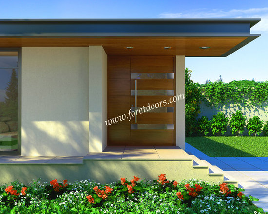 Modern front entry doors / contemporary front entry doors - Solid wood contemporary entry door with stainless steel plaques and stainless steel pull