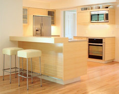 Highlights contemporary kitchen