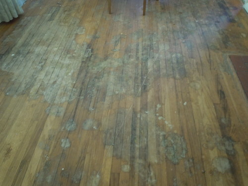 Refinish or replace oak floors in my 1954 home for Replacing wood floors