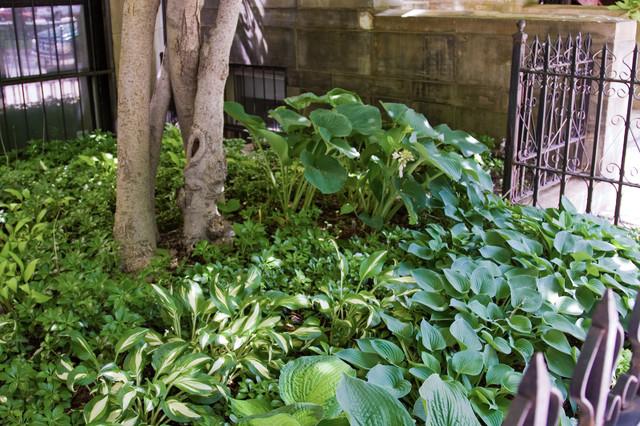 Commonwealth Avenue Garden eclectic