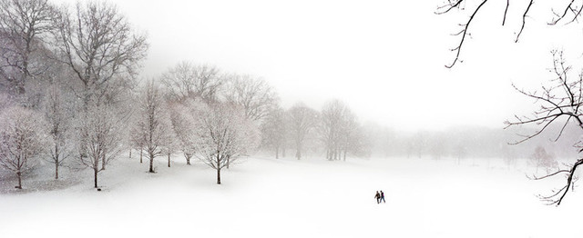 Prospect Park #2, by Joseph O. Holmes contemporary-artwork