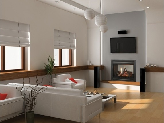 Heat & Glo ST-36 See-Through Gas Fireplace eclectic