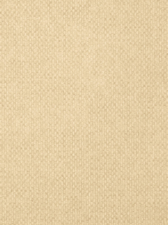 Texture Resource Volume 4 - Flat Shots - Monaco wallpaper in Sand (T14167) from Thibaut's Texture Resource Volume 4 Collection