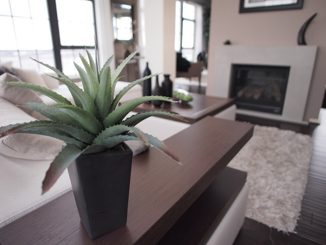 SIlo Point Model Home contemporary