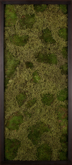 Moss and Lichen Landscapes, 1 eclectic artwork