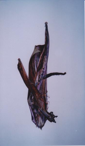 Primitive Future Sculptures contemporary-artwork
