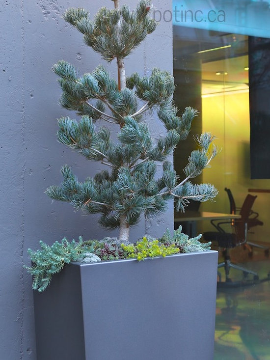 Pot Inc. Custom Planters & Fire Bowls -