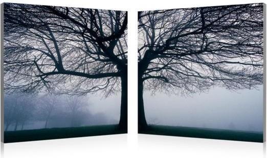 November Tree traditional-artwork