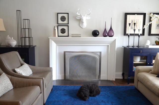 Fireplaces contemporary-living-room