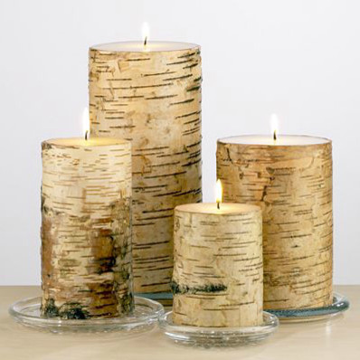 Birch Pillar Candle Collection contemporary candles and candle holders