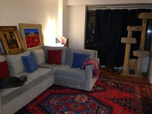 Rug Ideas To Go With My Light Gray Sofa And Blue Curtains