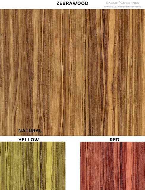 Removable and Reusable Zebrawood Casart eclectic-wallpaper