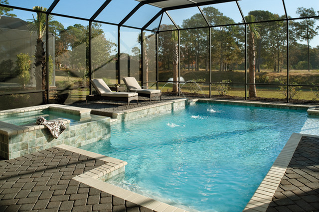Coquina 1137 pool tampa by arthur rutenberg homes for Pool designs florida