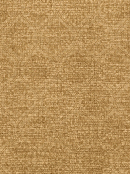 Texture Resource Volume 4 - Flat Shots - Bankun Damask wallpaper in Tobacco (T14119) from Thibaut's Texture Resource Volume 4 Collection