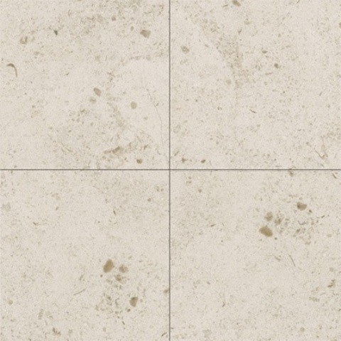 10 Set of Gascogne Beige 16X16 Honed modern-wall-and-floor-tile