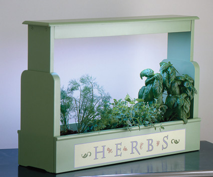 Lighted Herb Planter traditional-indoor-pots-and-planters