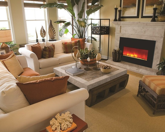 Amantii Insert 33-4230 - Jeanne Grier/Stylish Fireplaces & Interiors