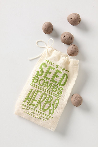 Seed Bombs contemporary-plants