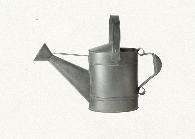 traditional irrigation equipment Wide Spout Watering Can