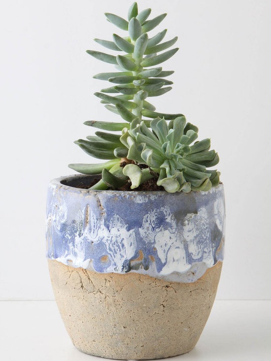 Umbellifers Herb Pot, Large Pot - With its handmade appearance and casual, nonchalant vibe, this pot would warm up any spot you'd like to enliven with a plant or two.