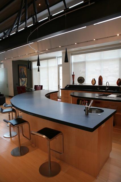 Contemporary House contemporary-kitchen