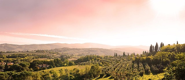 Tuscan Landscape Panorama Wall Mural -- Self-Adhesive Wallpaper by MagicMurals contemporary-wallpaper