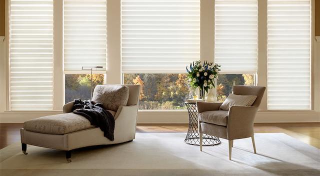 Hunter Douglas Solera modern-window-blinds