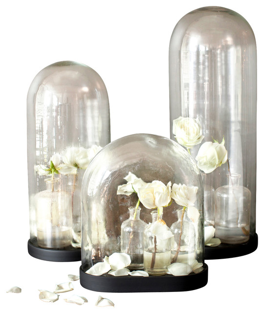 Glass Dome w/ Wood Base, Large - Modern - Home Decor - by BoBo Intriguing Objects