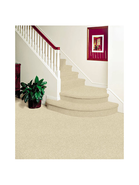 Royalty Carpets - Concorde furnished & installed by Diablo Flooring, Inc. showrooms in Danville,
