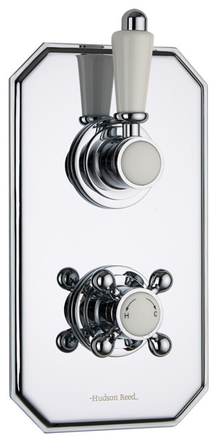 Traditional Concealed 2 Outlet Twin Diverter Thermostatic Shower Valve contemporary-showerheads-and-body-sprays