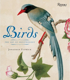 Birds: The Art of Ornithology eclectic books