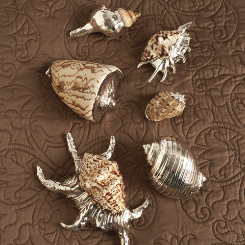 The Silver Sea Silver Plated Shells - Set of 6 by Two's Company® eclectic-tabletop