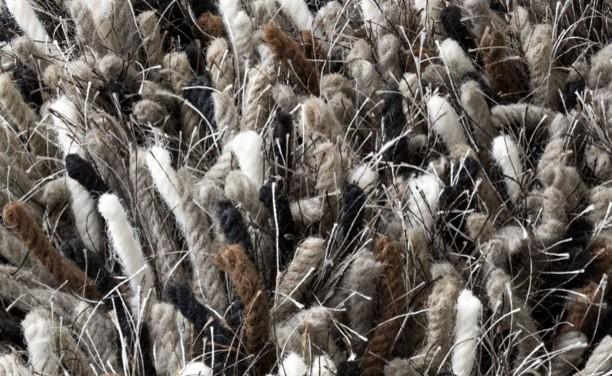Betona Grey Contemporary & Modern Rug by Linie Design contemporary-rugs