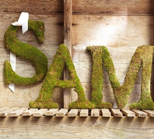 Live Moss Letter Traditional Home Decor Sacramento