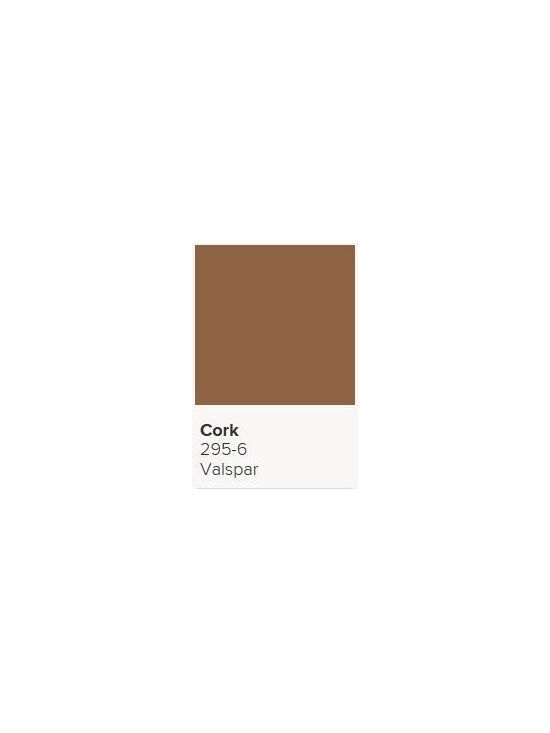 Jerilyn's Successful Paint Colors - This was used in a master bedroom- very warm and cozy. Looks more rust on the paint chip when it's placed under fluorescent lighting, but on the walls it turns more of a warm brown. By Valspar.