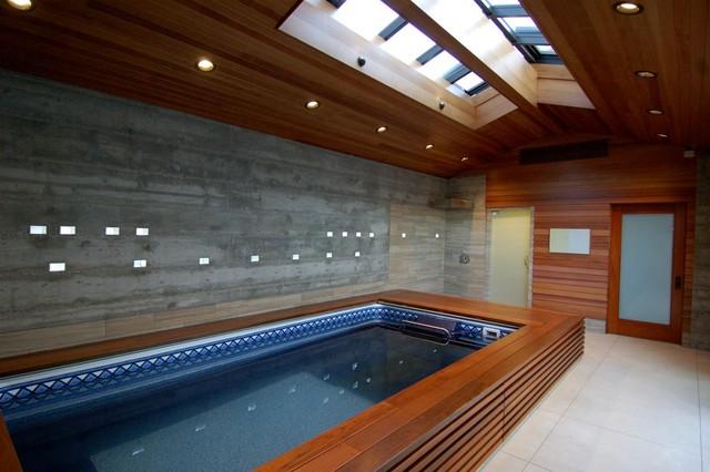 Original Endless Pools Modern Design Pool Modern Hot