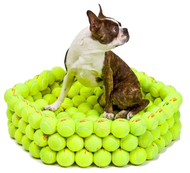 Tennis Bed eclectic-pet-supplies