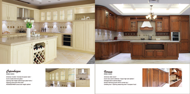 E catalogue vidas kitchen modern kitchen cabinetry for Modern kitchen designs pdf