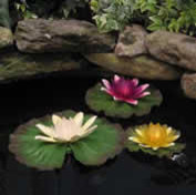 Floating Lily Lights contemporary-outdoor-lighting