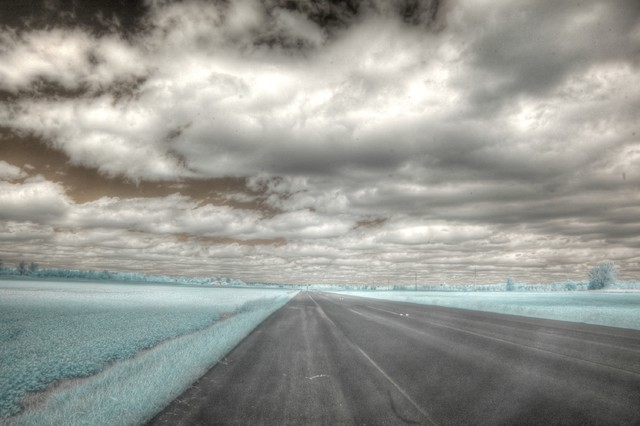 Find  The Open Road contemporary
