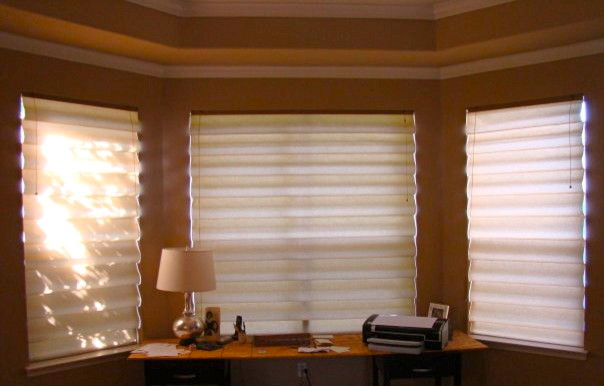 Shades (Solar, Roman & Cellular) contemporary-roman-shades