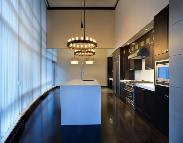 PALISADE | Penthouse Remodel contemporary