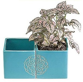 Floral Debossed Flower Pot, Turquoise contemporary indoor pots and planters
