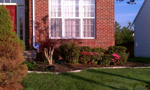 Front Yard Landscaping Roses : Beautiful brick front with large windows but no curb appeal right