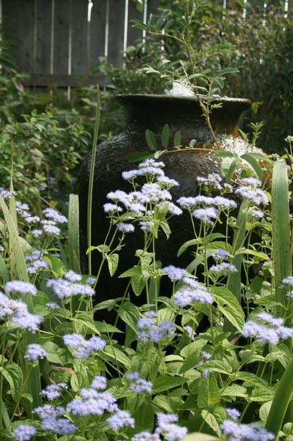 What Monarch Butterflies Taught Me Abot Garden Design