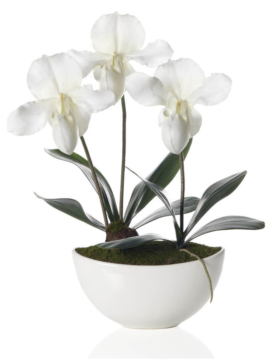 Lady Slipper With Pot, White - If you're not sure how to work white into your decor, a potted orchid is a good place to start. You don't need a green thumb for this one, and they look great on a coffee table, entry console, bathroom counter, etc.