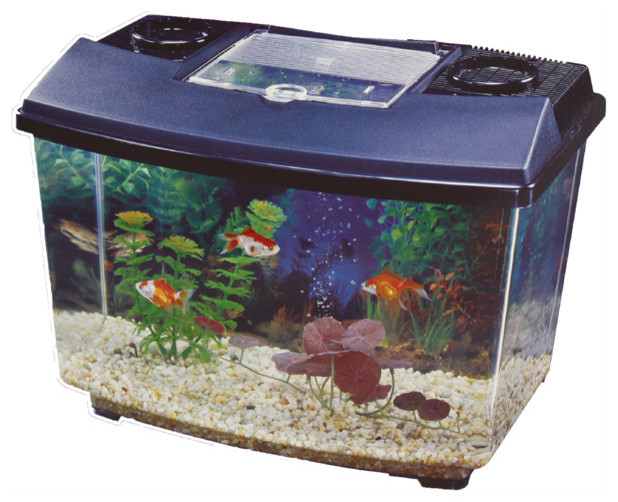 Childrens waterworld aquarium kit 15lt contemporary for Contemporary fish tank