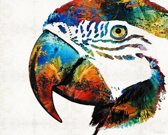Animals, Fish and Birds - Parrot Head Art By Sharon Cummings